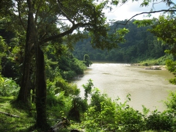 The Tembling River near Nusa Camp.
