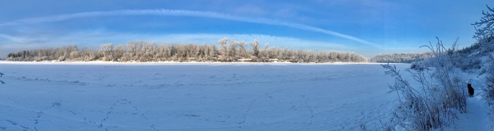 Looking across the frozen North Saskatchewan River (not north in Alberta and certainly not in Saskatchewan!)